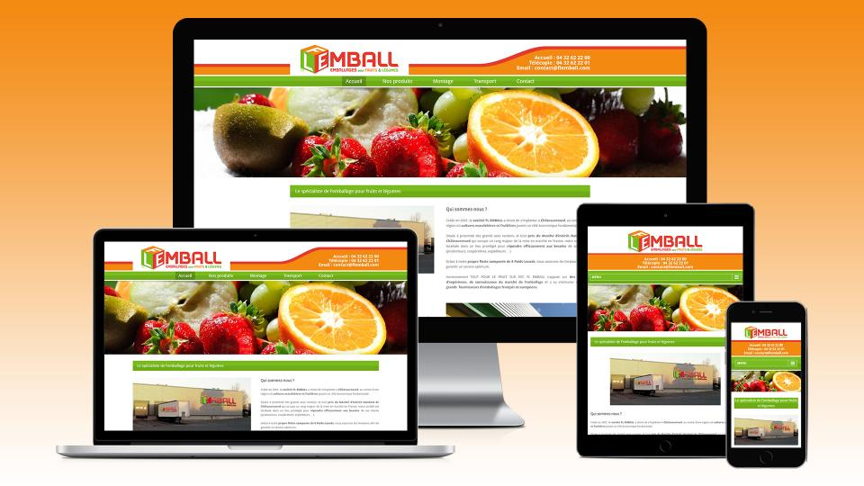 flemball creation site internet chateaurenard